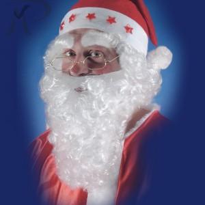 Barba bianca lungh. cm. 25 e sopracciglia Prezzo 7,60 €