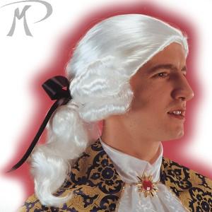 Parrucca Cavaliere bianco in valigetta