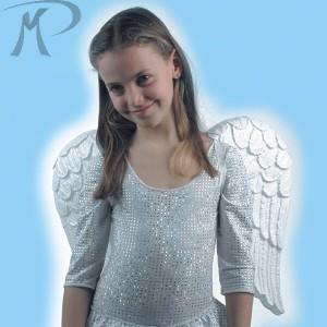 ALI ANGELO IN EVA H. CM.40X54 Prezzo 3,80 €