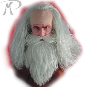 PARRUCCA MAGO con barba Prezzo 17,20 €